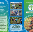 Единый день лесопосадок в Башкирии пройдет под девизом «Посади дерево - подари жизнь!»