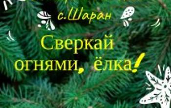 Приглашаем на главный праздник, открытие новогодней елки «Сверкай огнями, ёлка!»