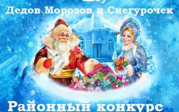 «Шоу Дедов Морозов и Снегурочек»